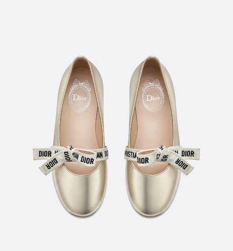 Ballerinas in metallic lambskin aria_topShotView